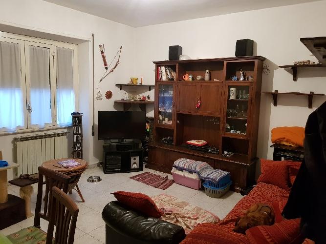 http://www.progettocasa1.it/immagini_immobili/01-12-2017/appartamento-vendita-colleferro-roma-via-enrico-ferri3-1046.jpg