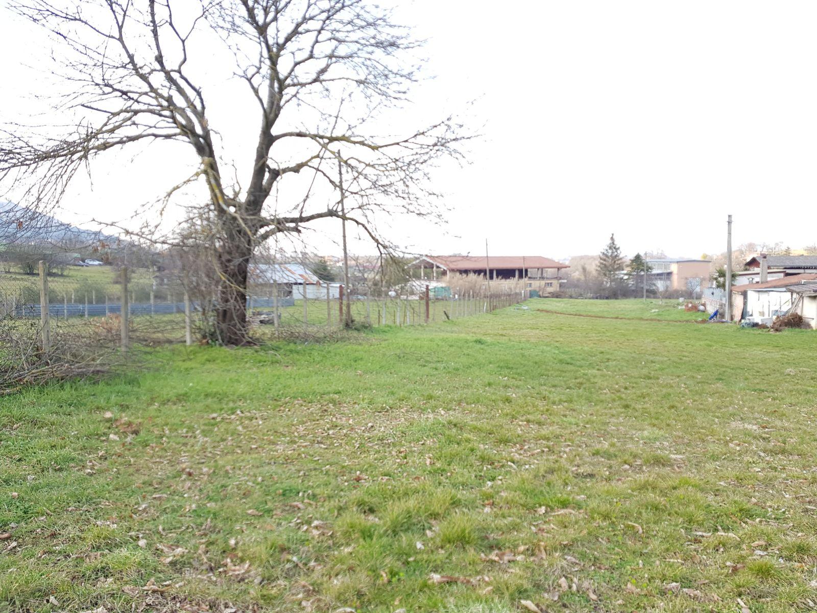 https://www.progettocasa1.it/immagini_immobili/02-03-2018/terreno-vendita-segni-roma-via-carpinetana-ovest-189.jpg
