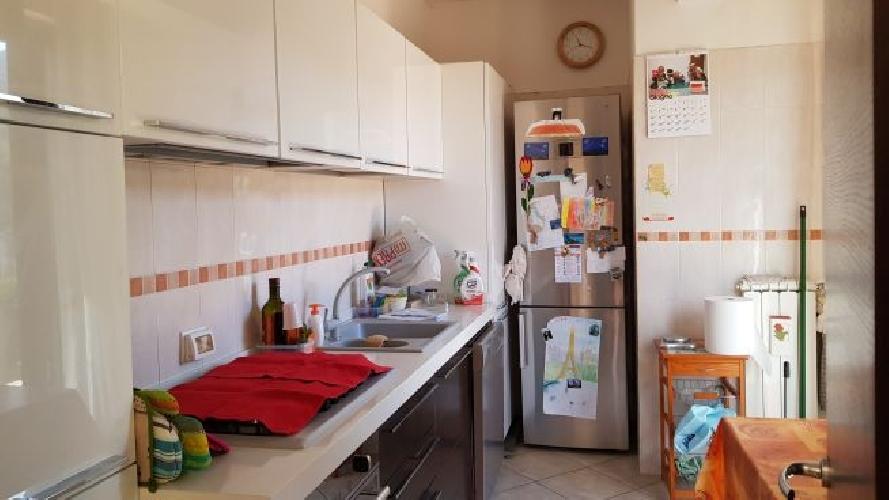 http://www.progettocasa1.it/immagini_immobili/02-11-2017/appartamento-vendita-colleferro-roma-via-degli-abeti-44-735.jpg