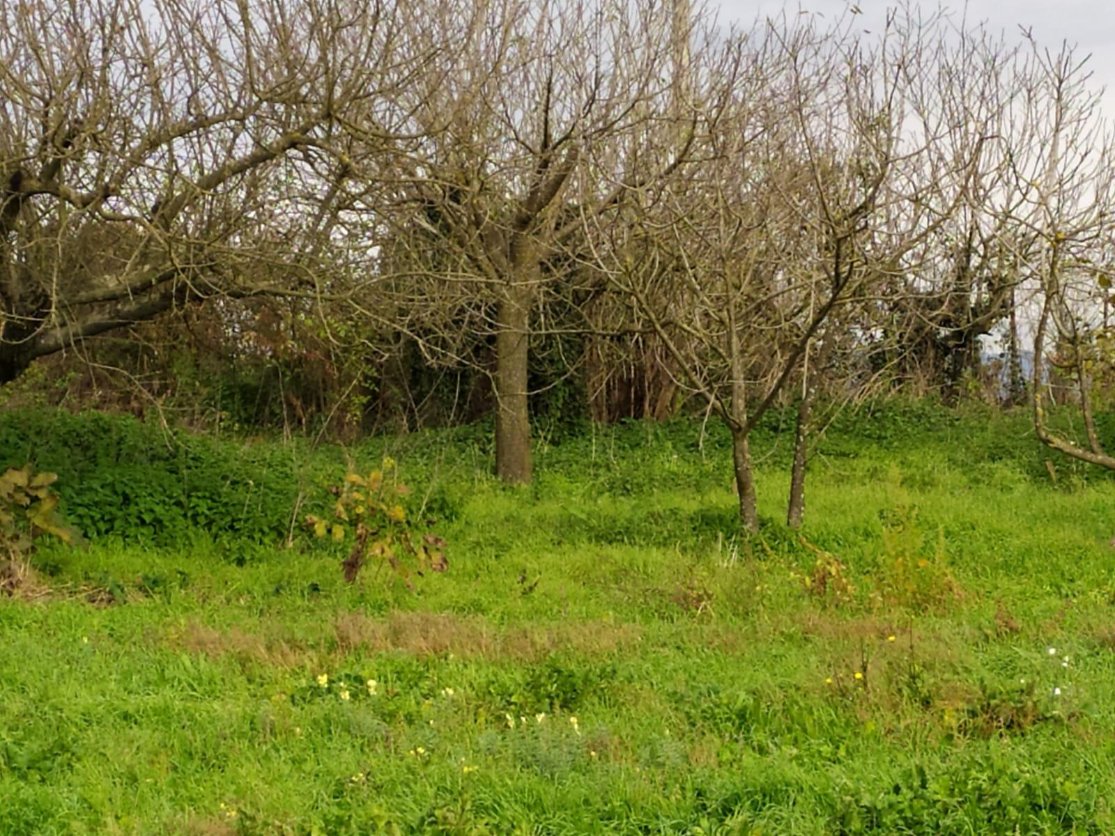 https://www.progettocasa1.it/immagini_immobili/04-01-2021/soluzione-indipendente--valmontone-roma-colle-san-giovanni-67-662.jpg