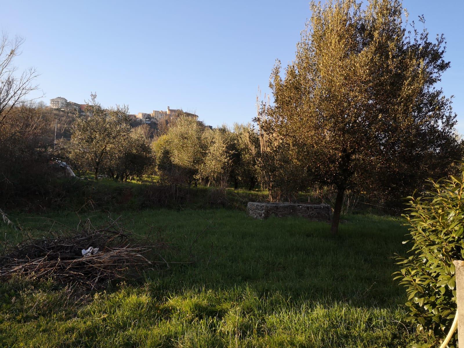 https://www.progettocasa1.it/immagini_immobili/04-03-2020/soluzione-indipendente-vendita-gavignano-roma-contrada-pugnani-491.jpg