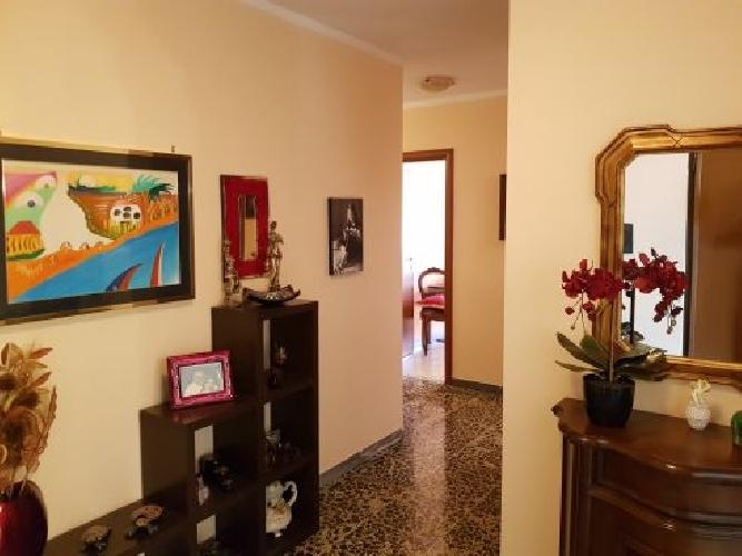https://www.progettocasa1.it/immagini_immobili/04-09-2019/appartamento-vendita-colleferro-roma-via-giuseppe-di-vittorio-64-927.jpg