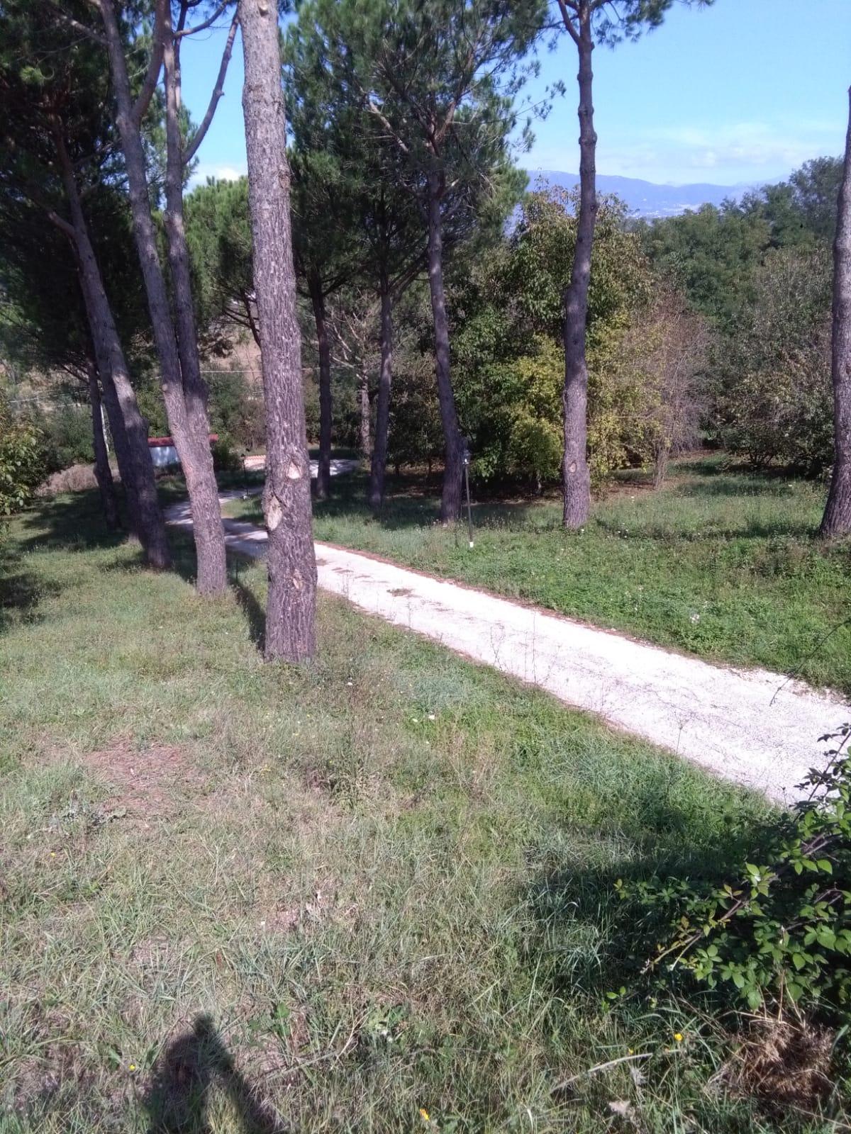 https://www.progettocasa1.it/immagini_immobili/06-06-2019/soluzione-indipendente-affitto-colleferro-roma-via-latina-244-552.jpg