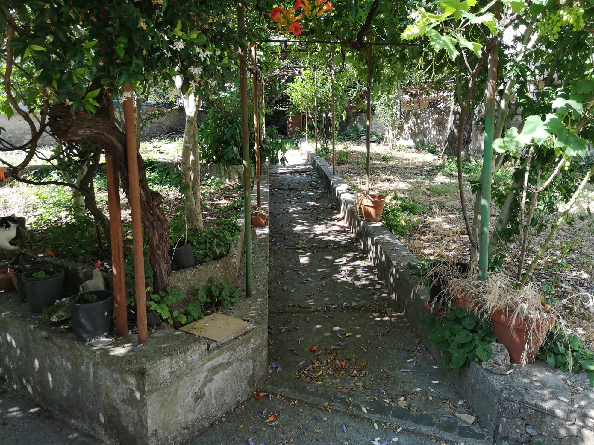 https://www.progettocasa1.it/immagini_immobili/07-07-2020/appartamento-vendita-colleferro-roma-via-pietro-metastasio10-588.jpg