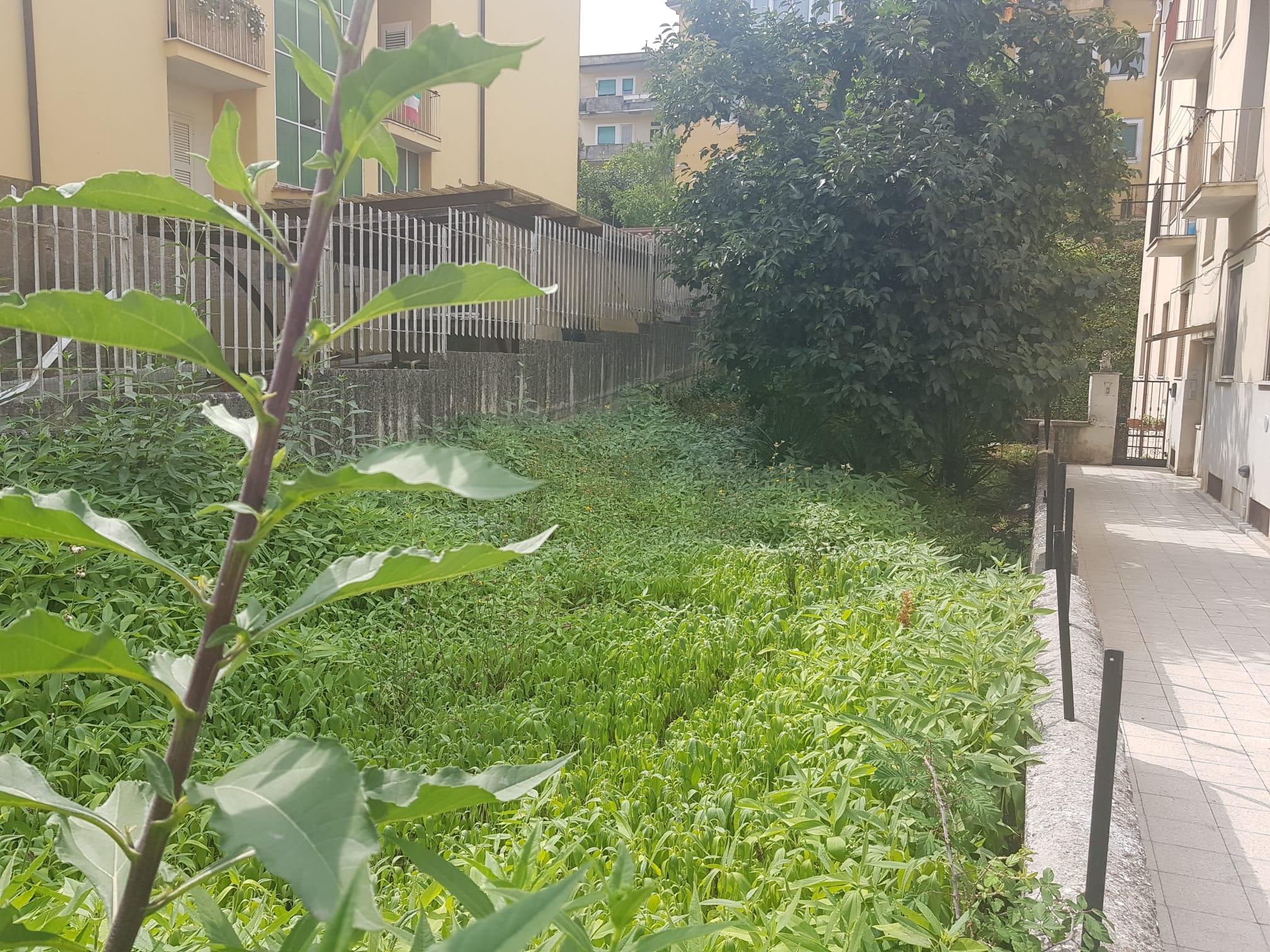 https://www.progettocasa1.it/immagini_immobili/11-09-2020/appartamento-vendita-colleferro-roma-via-aprilia-873.jpg
