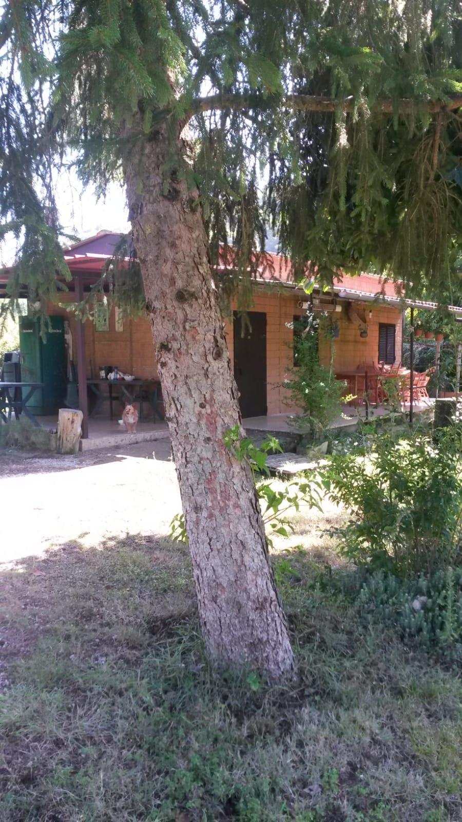https://www.progettocasa1.it/immagini_immobili/11-09-2020/soluzione-indipendente-vendita-montelanico-roma-localit-acquasanta-486.jpg