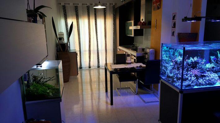 http://www.progettocasa1.it/immagini_immobili/13-04-2017/appartamento-vendita-colleferro-roma-via-pomezia-100.jpg