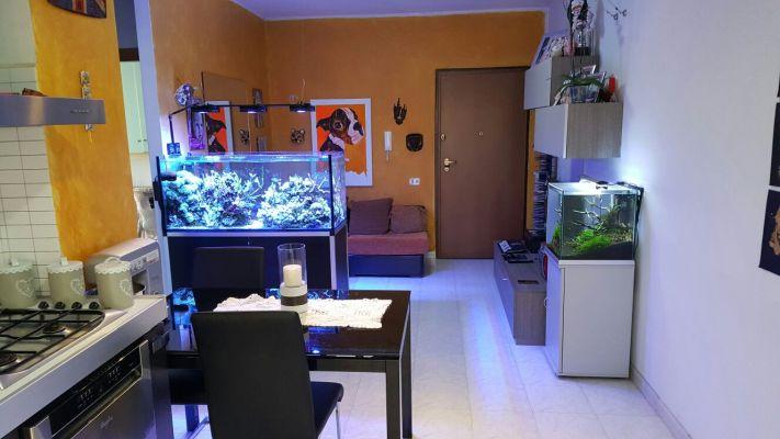 http://www.progettocasa1.it/immagini_immobili/13-04-2017/appartamento-vendita-colleferro-roma-via-pomezia-142.jpg
