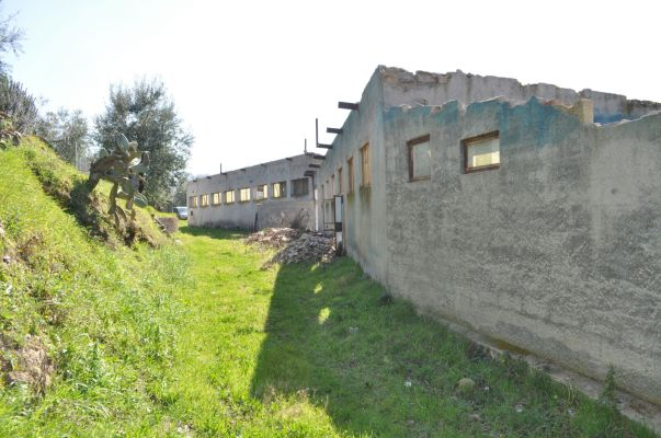 http://www.progettocasa1.it/immagini_immobili/13-04-2017/capannone-vendita-paliano-fr-localit-le-tofa-187.jpg