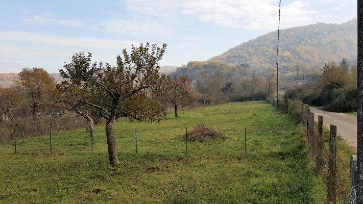 http://www.progettocasa1.it/immagini_immobili/14-04-2017/terreno-vendita-montelanico-roma-vigne-nuove-160.jpg