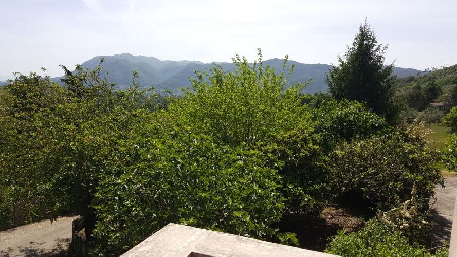 http://www.progettocasa1.it/immagini_immobili/15-05-2017/soluzione-indipendente-vendita-segni-roma-via-carpinetana-ovest-55-656.jpg