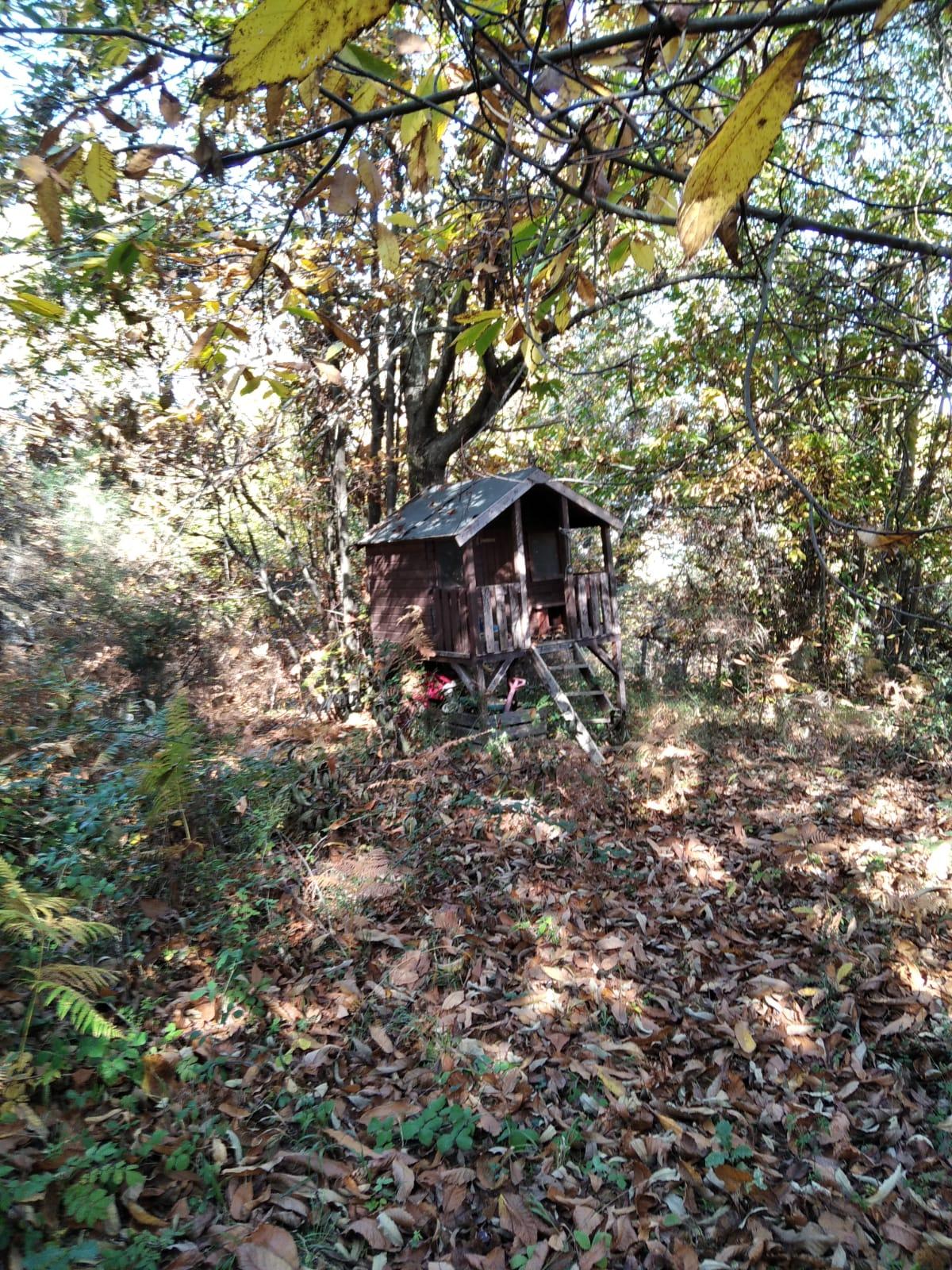 https://www.progettocasa1.it/immagini_immobili/16-11-2020/terreno-vendita-montelanico-roma-localit-corvati-417.jpg