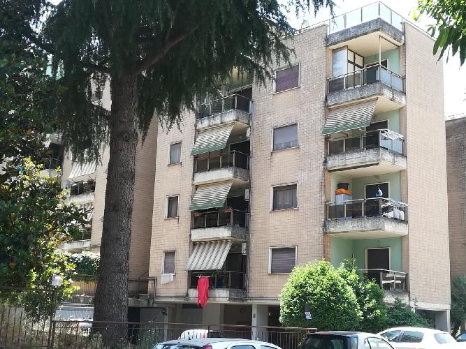 https://www.progettocasa1.it/immagini_immobili/24-06-2019/appartamento-vendita-colleferro-roma-via-delle-betulle-56-614.jpg