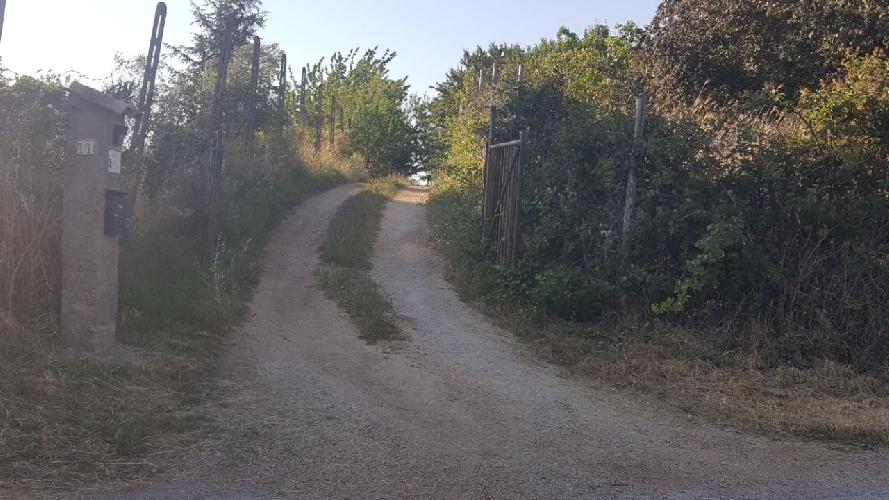 http://www.progettocasa1.it/immagini_immobili/27-06-2017/terreno-vendita-colleferro-roma-via-degli-abeti-384.jpg