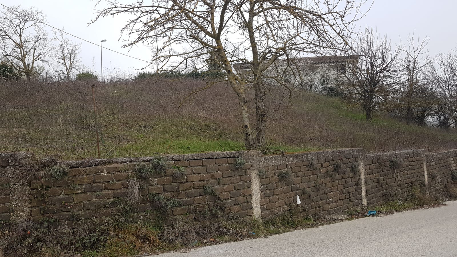 https://www.progettocasa1.it/immagini_immobili/31-05-2019/terreno-vendita-colleferro-roma--217.jpg