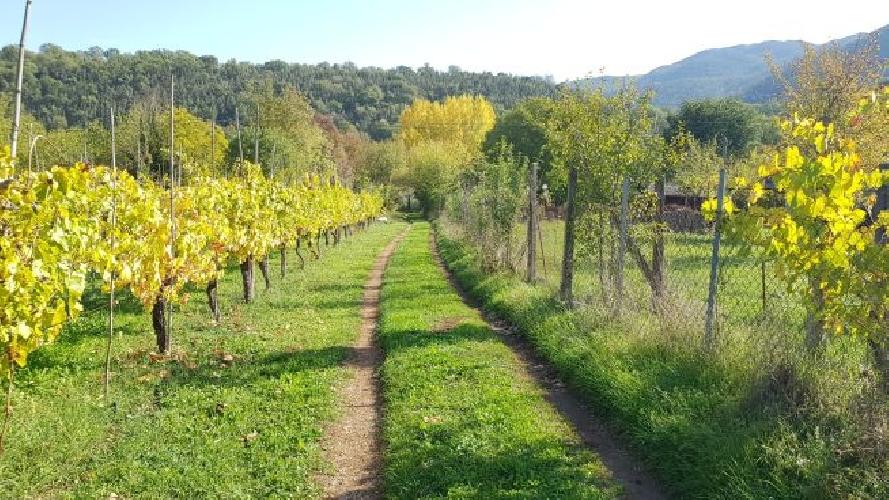 http://www.progettocasa1.it/immagini_immobili/31-10-2017/soluzione-indipendente-vendita-montelanico-roma-loc-acquasanta-520.jpg