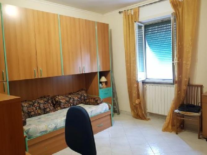 https://www.progettocasa1.it/immagini_immobili/31-10-2019/appartamento-vendita-colleferro-roma-corso-garibaldi-89-237.jpg